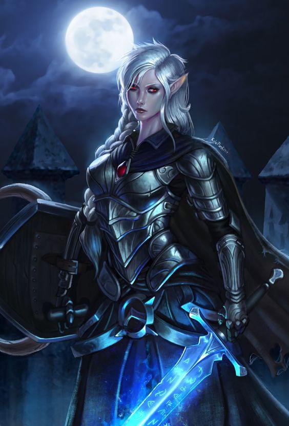 Dunkelelfe warrior